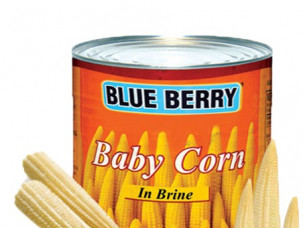 Sweet Baby corn Canned..