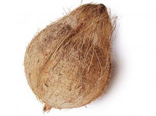 Fresh Coconut Semi Husked A Grade..
