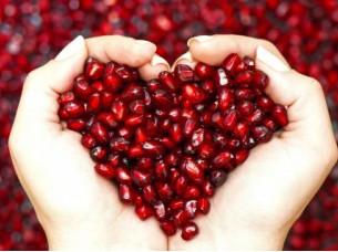 Fresh Pomegranates fruit for Russia..