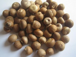 Top Quality Betel Nuts..