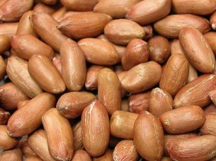 Raw Peanut for Sale..