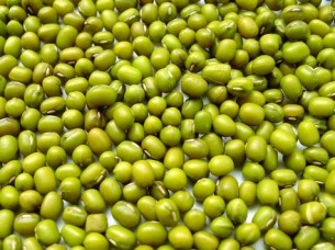 Top Quality Green Mung Beans..