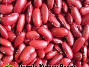 Purple Kidney Beans..
