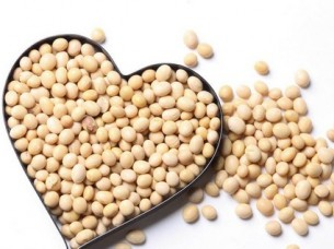 High Quality Soybeans..