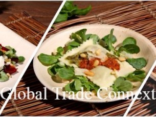 Disposable Natural Palm Areca Leaf Plates and Bowls..