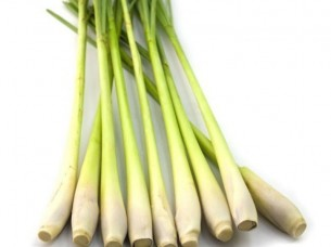High Quality and Good Price Frozen Lemon Grass..