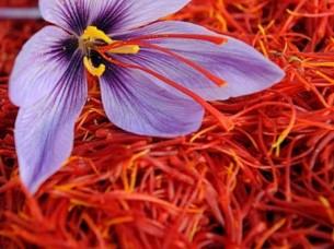 High Quality Pure Saffron..