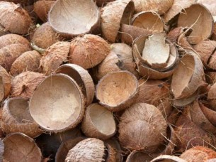 Coconut Shell For Industrial Use..